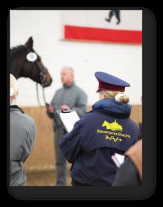Auch das professionelle Beurteilen von Pferden ist eine Aufgabe beim Bundesberufswettbewerb der Pferdewirtauszubildenden in der Fachrichtung Zucht und Haltung und Service
